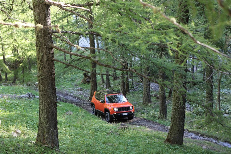 Jeep Renegade 2015 Trailhawk