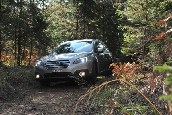 Subaru Outback 2015 Forest Foglights Front