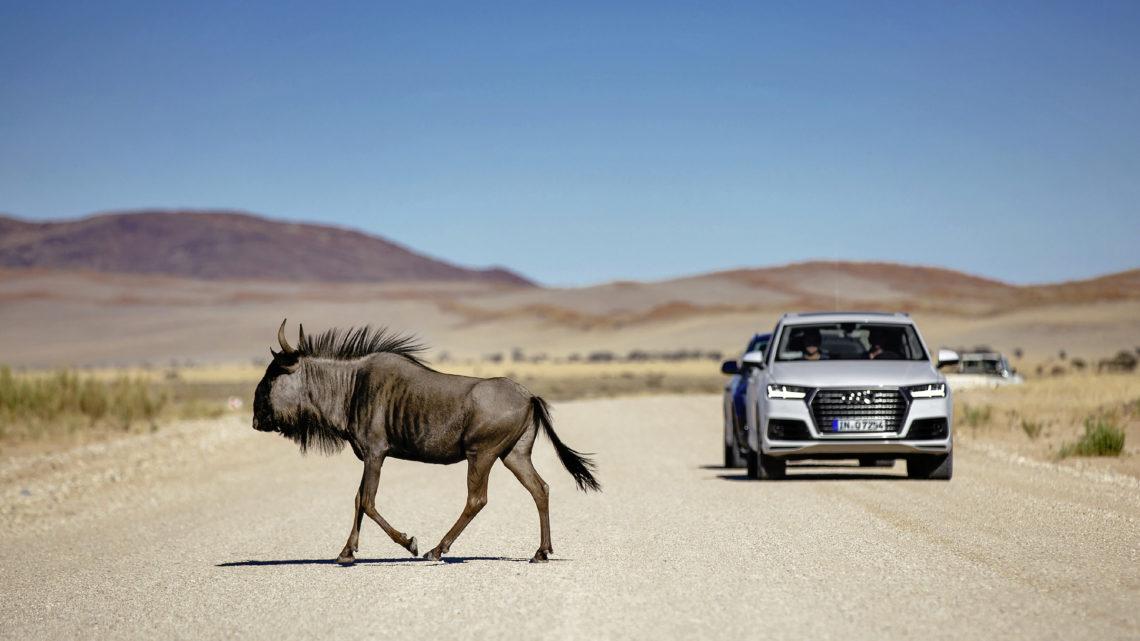 Audi Q7: technische Daten und Assistenzsysteme