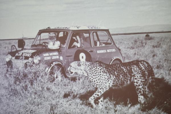 Rauno Aaltonen war einer der erfolgreichsten Rallye-Piloten der 1960er-Jahre, legendär sind seine Siege mit dem Mini Cooper. Bei der Rallye Safari, die als eine der härtesten Rallyes gilt, errang er sechs Mal den zweiten Platz.