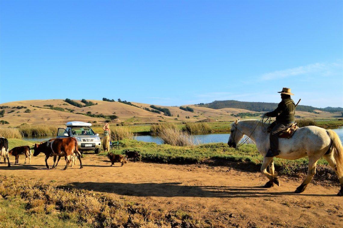 Mit dem Dachzelt durch Patagonien