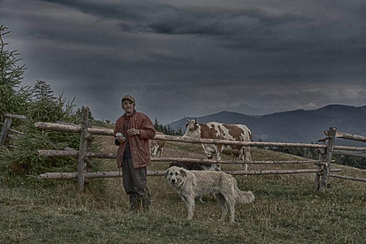 Offroad in den Ostkarpaten, Siebenbürgen, Rumänien: ein Hirte mit seinem Hund