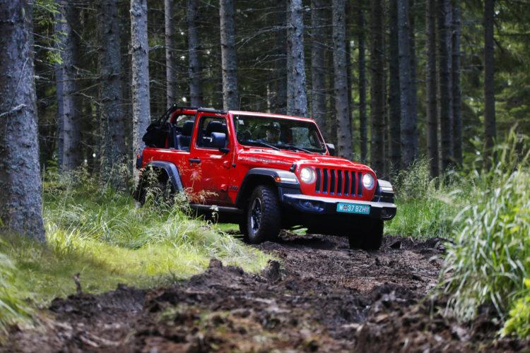 Jeep Wrangler JL im Wald
