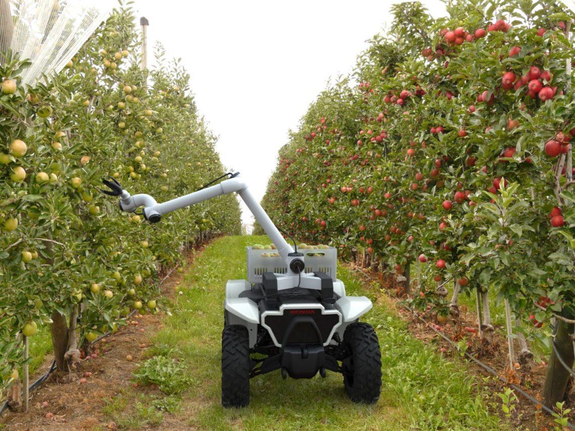 Der autonome Helfer für die Apfelernte: Honda 3E-D18